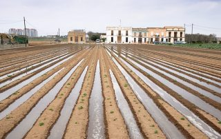 FAO-Valencia-riegos-pous