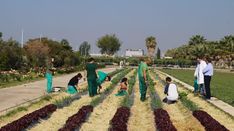 escuela-agricultura-riegos-pous